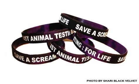 Research animal cruelty laws